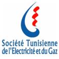 steg-logo